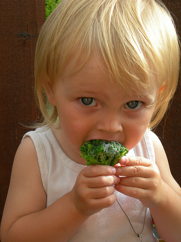Theory – Children are Broccoli?