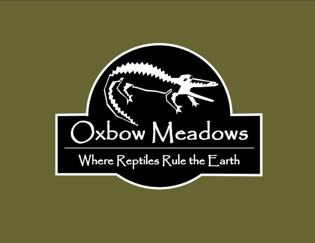 Reptile Fest at Oxbow Meadows