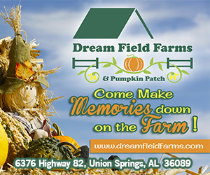 Dream Fields Farms