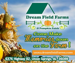 Dream Fields Farms