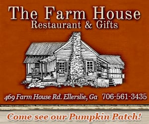 The Farm House Pumpkin Patch