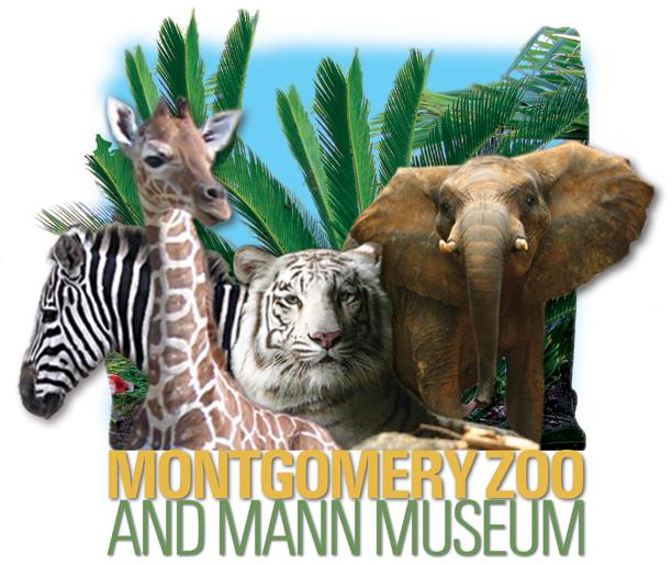 Christmas Lights Festival @ Montgomery Zoo - Muscogee Moms
