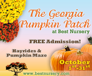 Best Nursery Pumpkin Patch