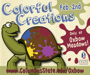 Oxbow_ColorfulCreations