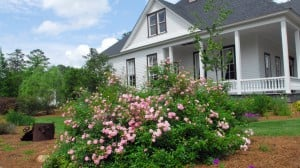 The-Adams-Farmhouse-Columbus-Botanical-Garden