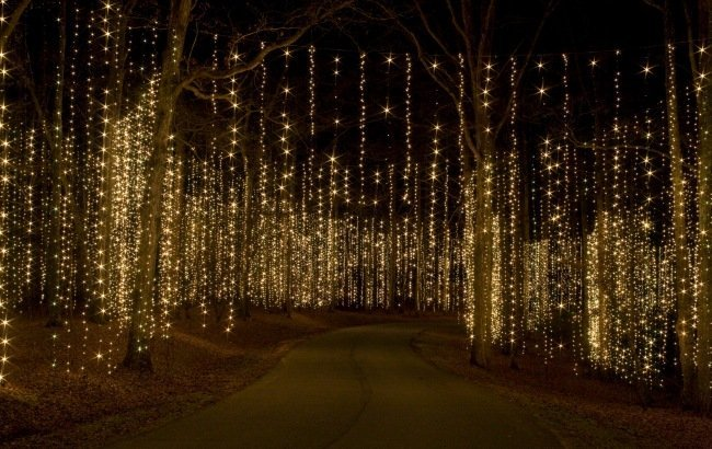 Night Bicycle Ride Through Fantasy In Lights @ Callaway Gardens