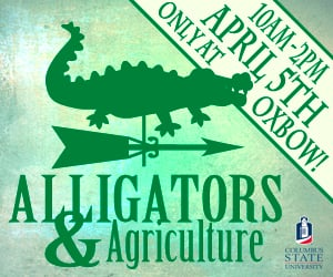 Oxbow Alligators and Agriculture