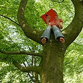 child-reading-in-tree_1