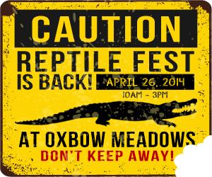 Reptile Fest 2014