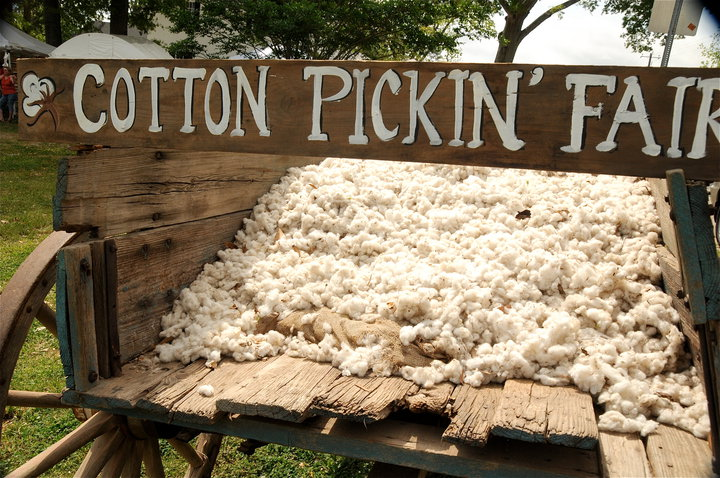 Cotton Pickin' Fair 2014