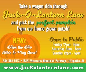 Jack O Lantern Lane