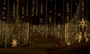Muscogee Moms Review Fantasy In Lights At Callaway Gardens