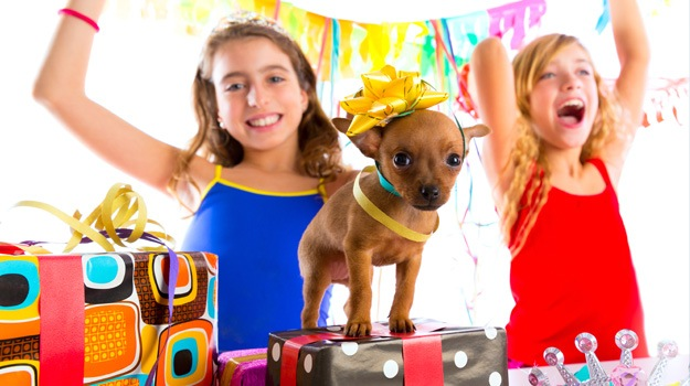Affordable Birthday Gift Ideas for Kids