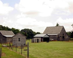 Day Trip Idea: Jimmy Carter National Historic Site