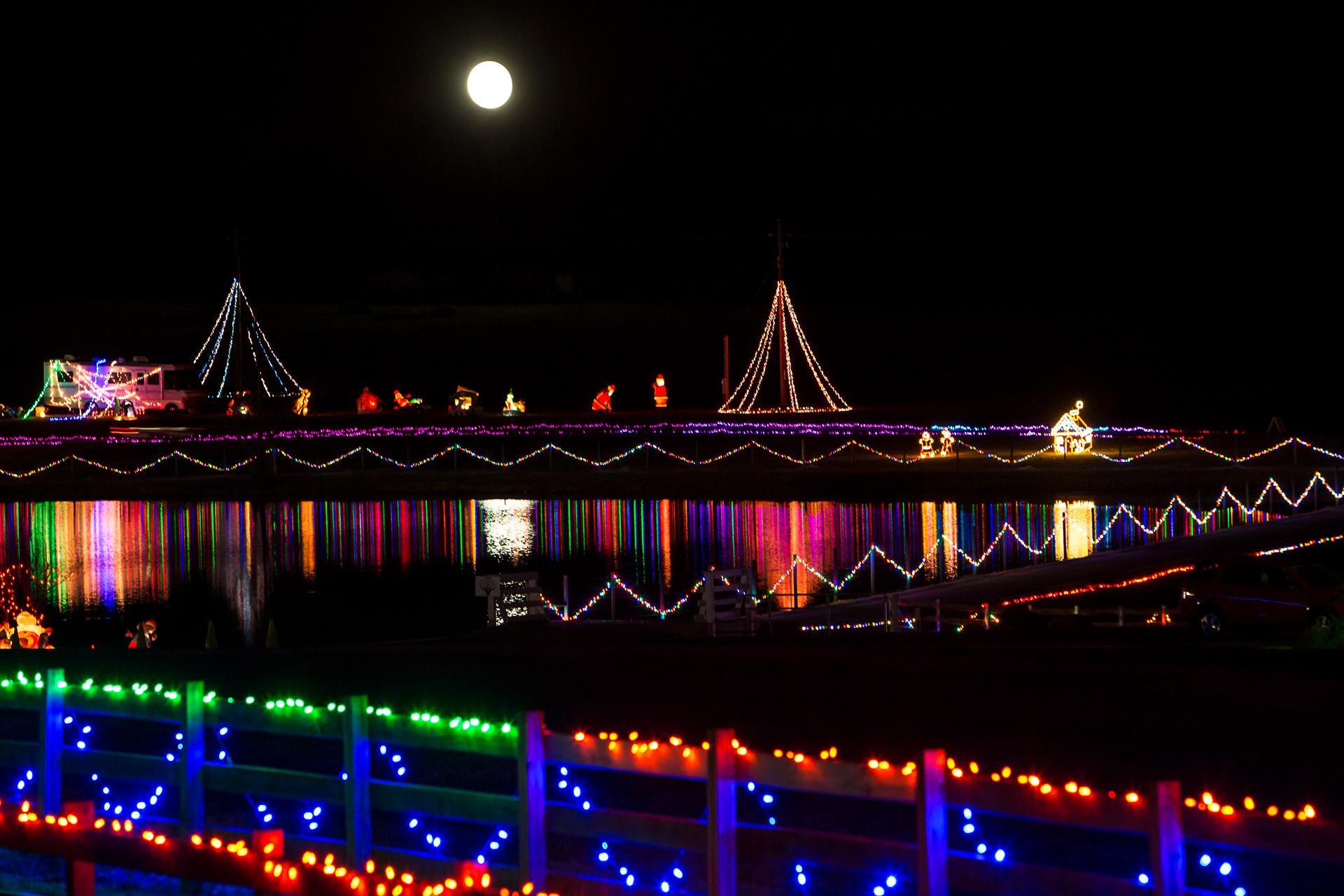 Georgia Christmas Lights