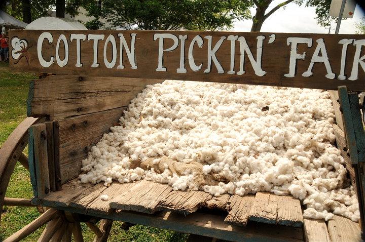 Cotton Pickin Fair