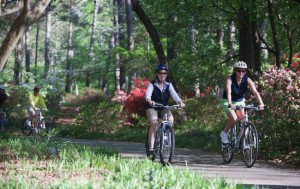 Individual Annual Pass to Callaway Gardens ($49)