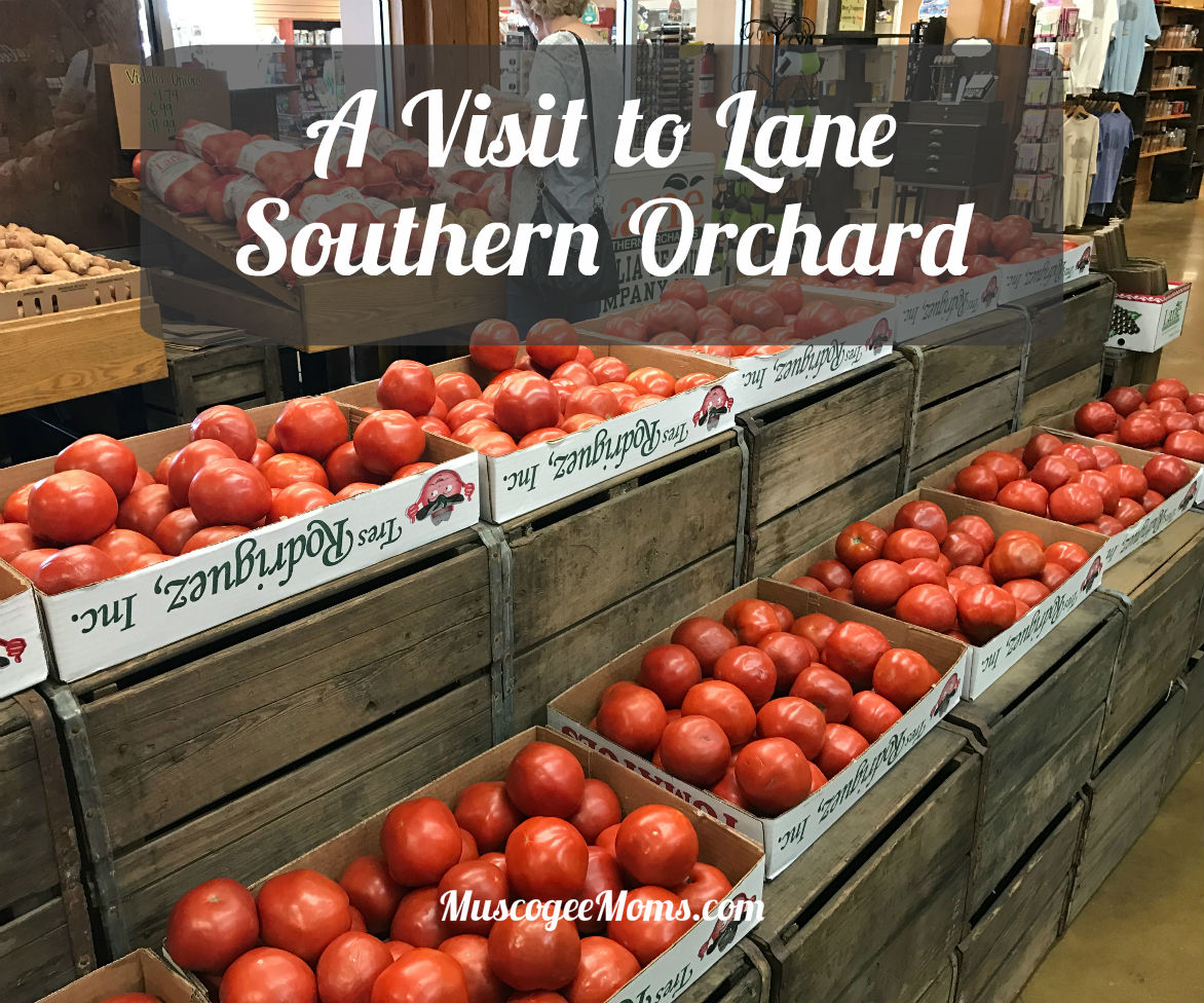 A visit to Lane Southern Orchards #Review