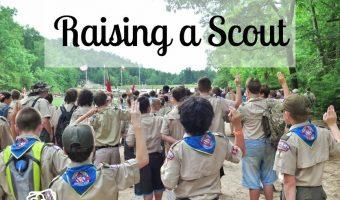Raising a Scout