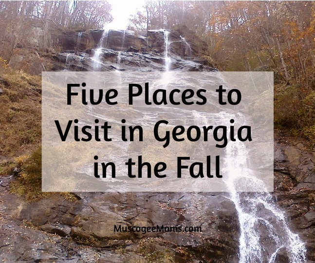 Places to visit in Georgia in the fall