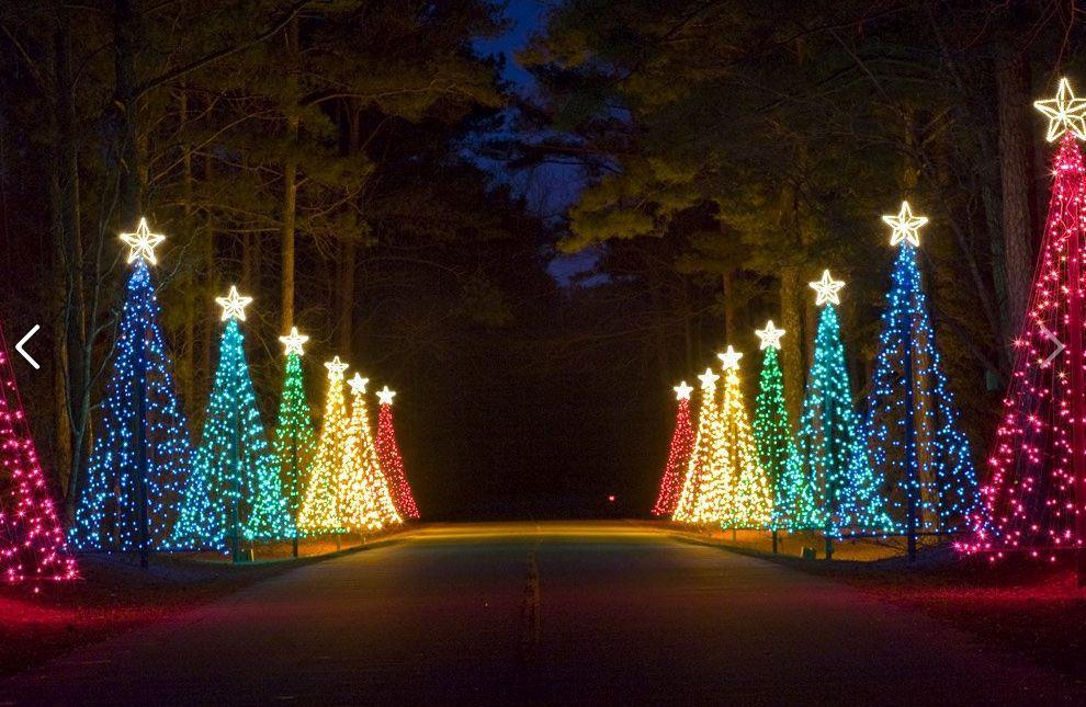 Fantasy in Lights: Christmas Tree Lane