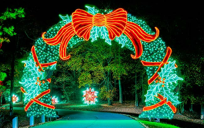 Fantasy in Lights