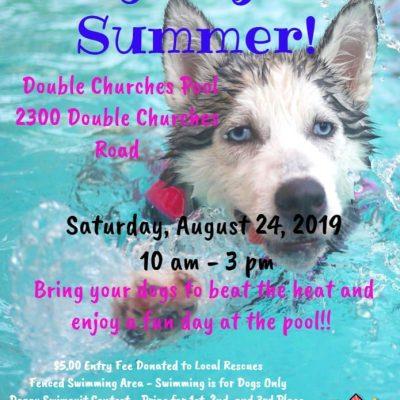 Dog Days Of Summer – Doggy Swim Day