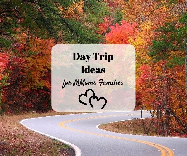 Day Trip Ideas