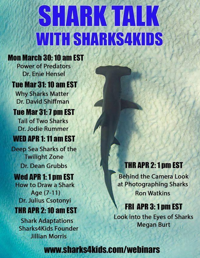 Shark Talk with Sharks4Kids