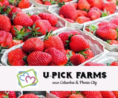 U-Pick Farms